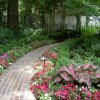 Commercial - summer-color-beds-07-007