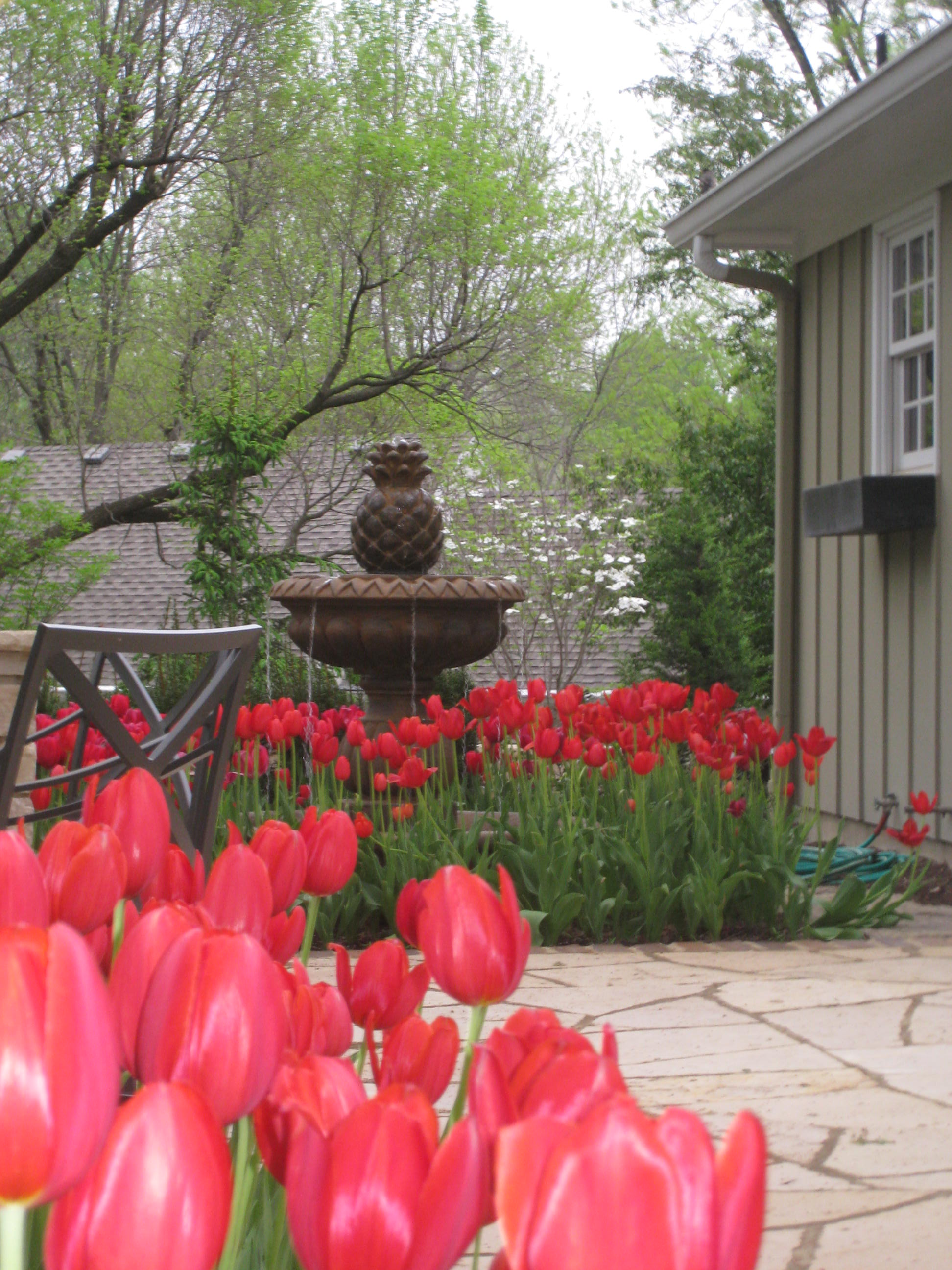 ... Kansas City Garden Fountain With Red Flowers ...