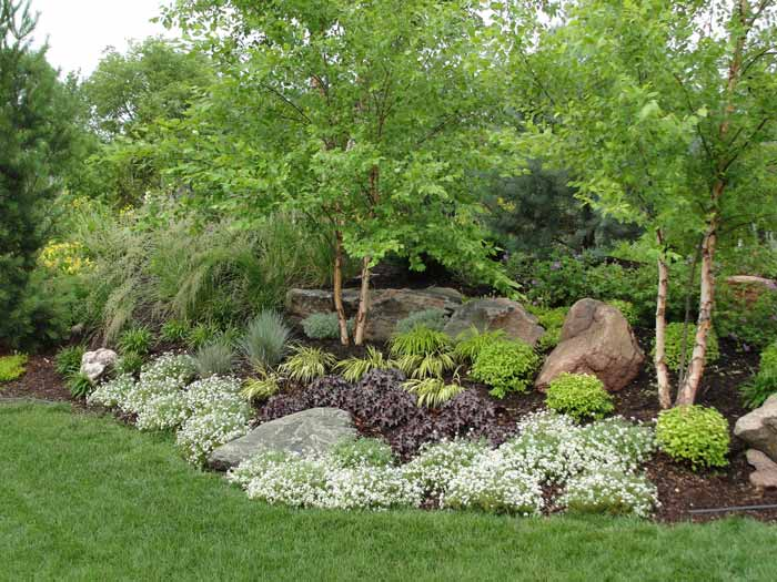 Professional residential landscaping by rosehill gardens for Creating a landscape
